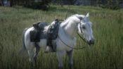 【レッドデッドリデンプション2】最速馬『白馬(アラブ)』の入手場所・入手方法【RDR2】