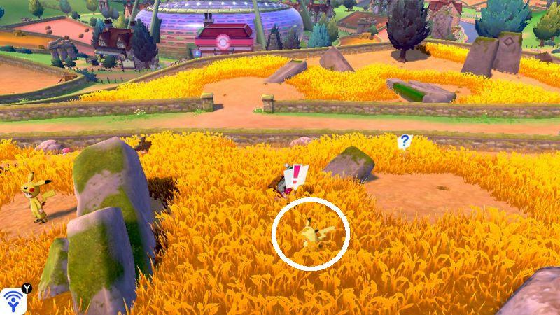 【ポケモン ソードシールド攻略】ピカチュウの出現場所・ピカチュウがゲットできる場所・探し方のコツは…【剣盾】